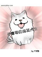萨摩耶的微笑犬生